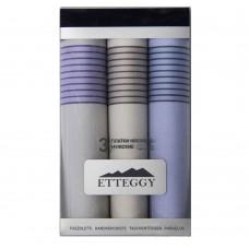 Р45430 Подарочный набор мужских носовых платков Etteggy 3 шт.