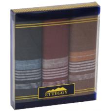 PD15D Подарочный набор мужских носовых платков Etteggy 3 шт.